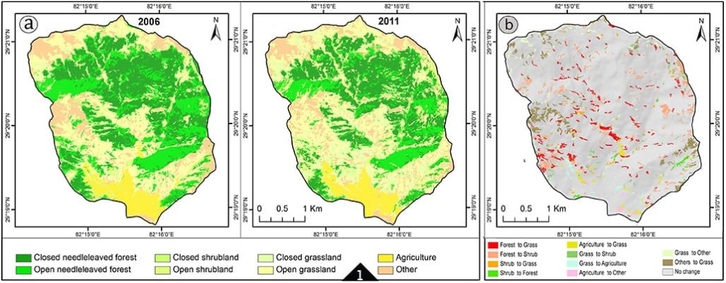FIGURE 1. Map of the Lorpa watershed showing land cover in 2006, 2011, and change detected. Based on eCognition's analysis, the area lost 12% tree canopy.
