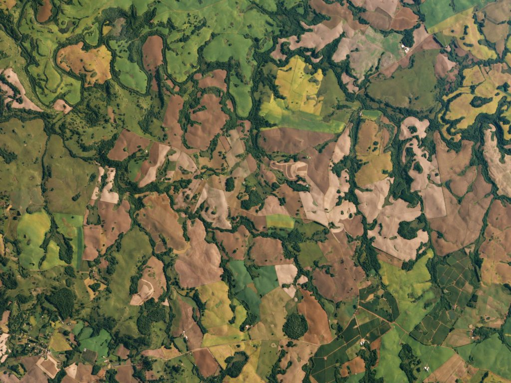 FIGURE 3. Dove satellites capture growing sugar cane fields in Brazil's southernmost state, Rio Grande do Sul. Image: Planet Labs, captured March 16, 2016.