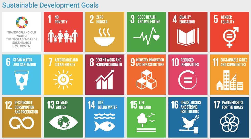 FIGURE 4. The Sustainable Development Goals of the Agenda 2030 agreed upon by the United Nations in 2015. From https:// sustainabledevel- opment.un.org/ sdgs.